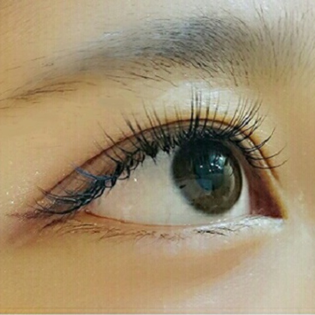 [Return] repair wearing unlimited [top] Platinum Silk ★ shop off included | Ophthalmology alliance Eyelash extensions shop eyelash Resort kahala Shinjuku | Last-minute booking service Popcorn