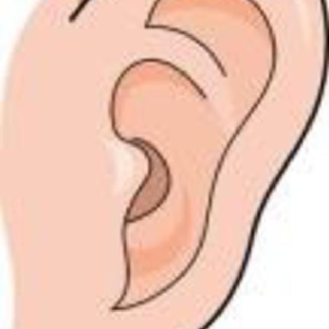 耳ツボダイエット シール交換(10分程度)