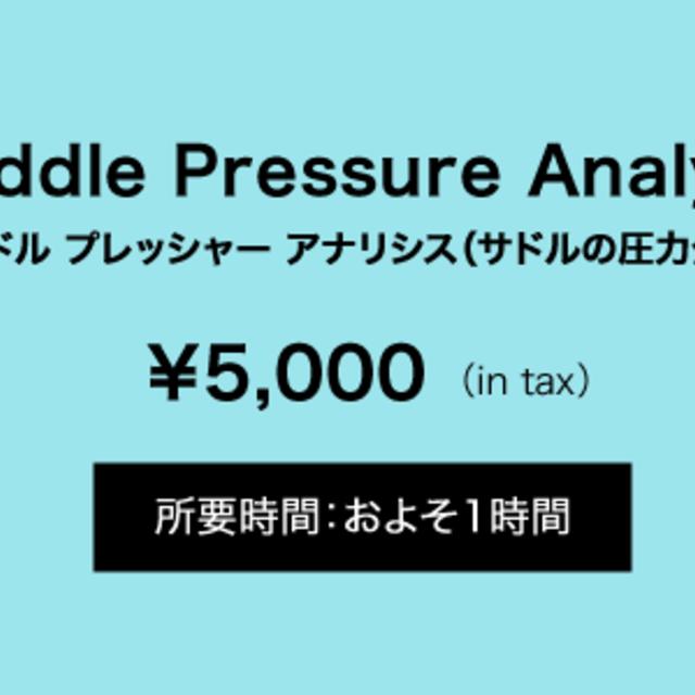 Saddle Pressure Analysis