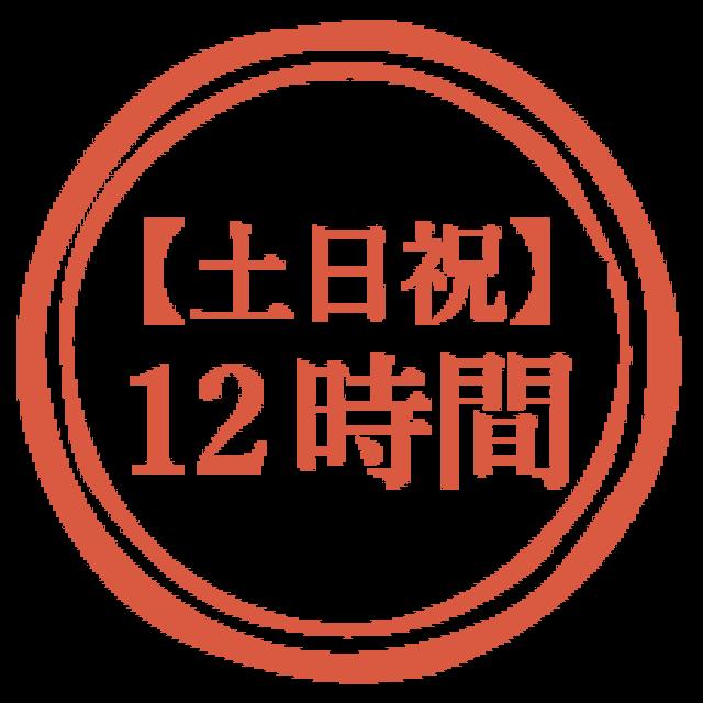 【土日祝】12時間利用