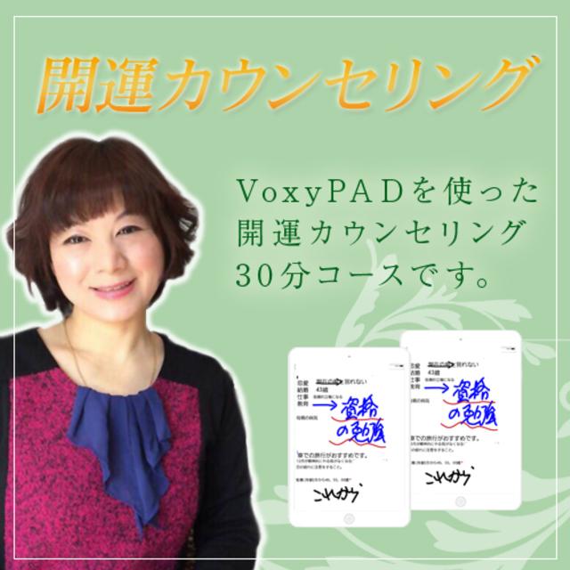 VoxyPAD開運カウンセリング(30分 7,000円)