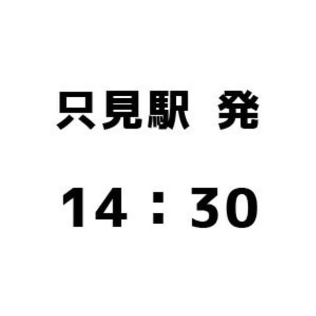 只見駅発14:30