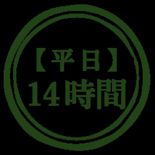 【平日】14時間利用のお得なパッケージメニュー(14,000円)*オプションは別途料金