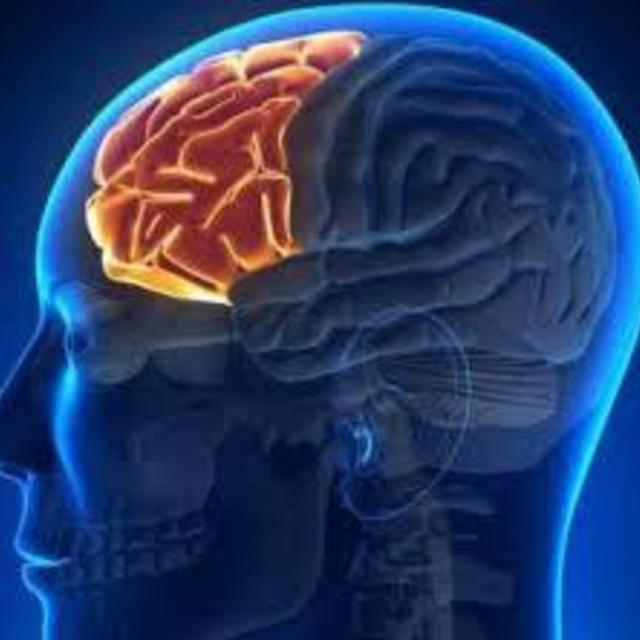 さらに脳もやもやデトックス!メンズOK。ブレインセラピー【75分】