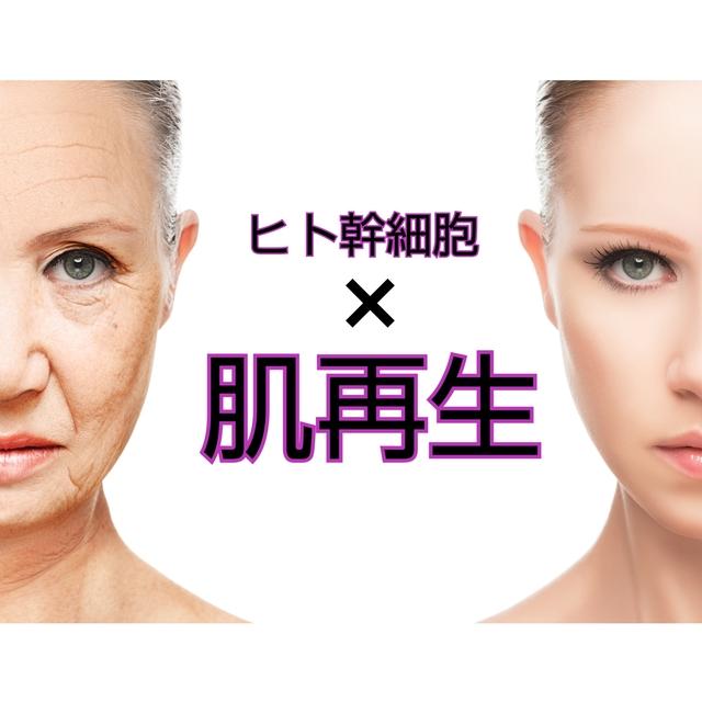 (再来)【肌再生】ヒト幹細胞×フレッシュ成長因子導入