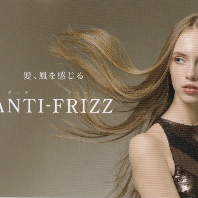 ANTI-FRIZZ(アンチフリッツ)