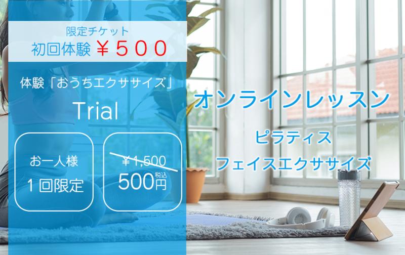 オンライン初回体験¥500 限定チケット