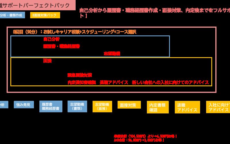 転職サポートパーフェクトパック(A+B)