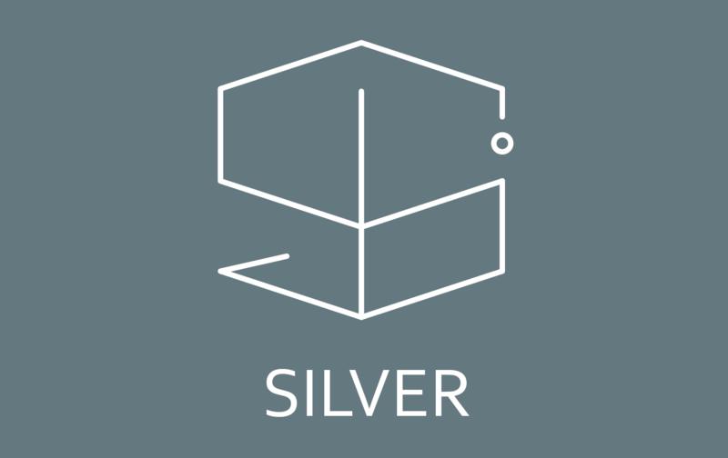 【スタンダード】SILVER