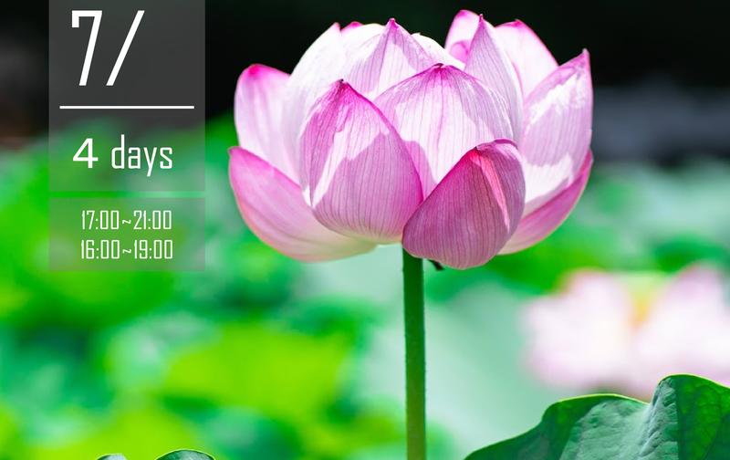 Mind Reset Yoga Online 15時間集中 指導者養成講座
