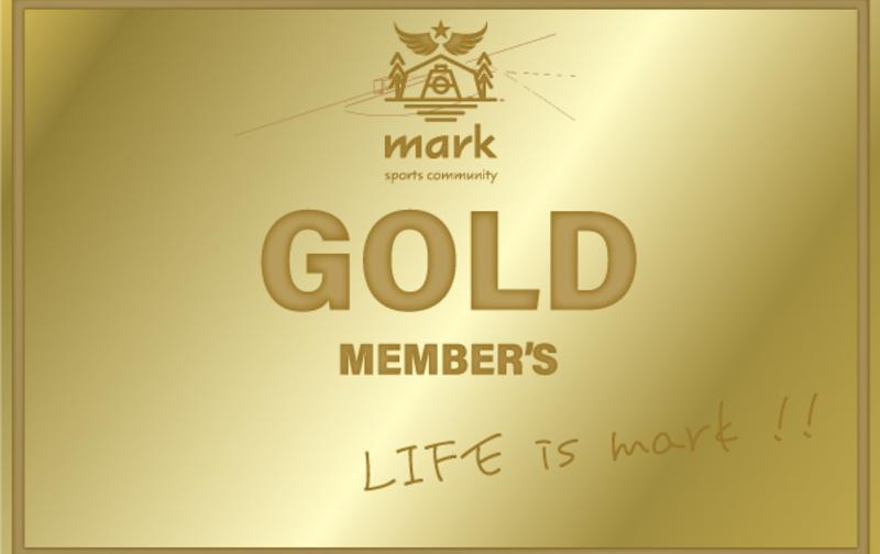 ゴールド ※初回登録料が別途でかかります