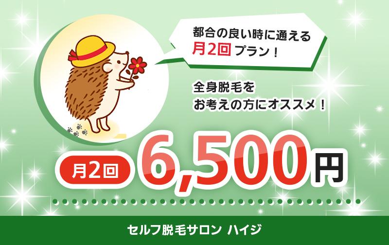 定額「毎月2回」(7,900円→6,500円)