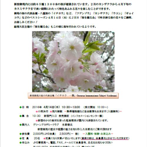 2016 新宿御苑 JHS観桜会「桜を観る会」