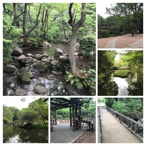 【11/5 月曜日 開催】デジカメ散歩(担当:小屋)