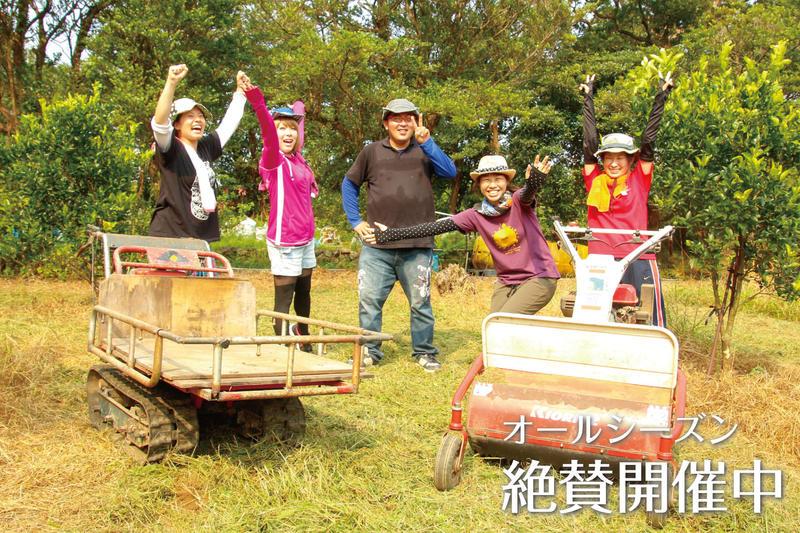 屋久島の農家さんにお邪魔して『農作業』を体験しよう!