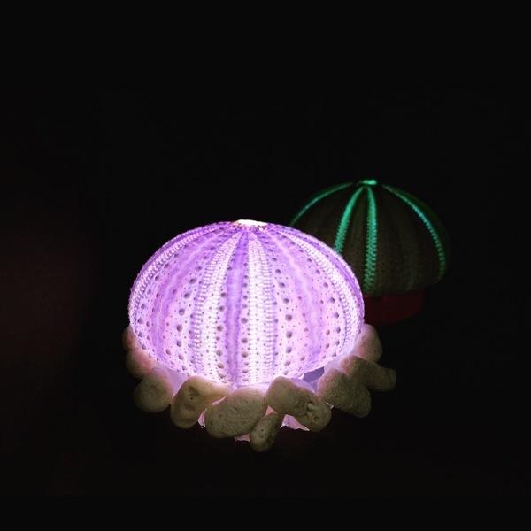 本物のウニの殻で作る「ウニランプづくり」@IID世田谷ものづくり学校