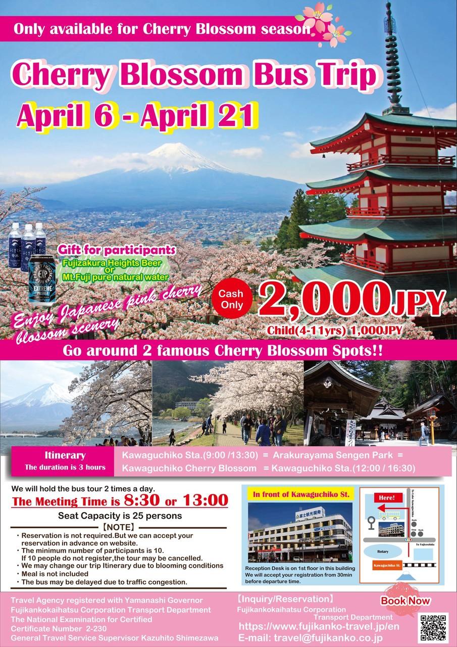 Cherry Blossom Bus Trip