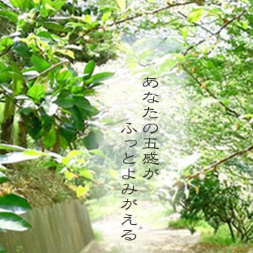 ママ山ベビマ@天理観光農園