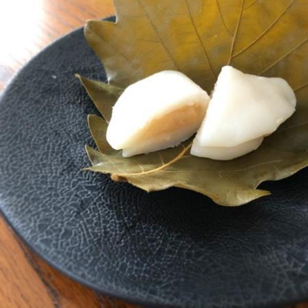 4月 季節の和菓子:柏餅|Apr: kashiwa mochi