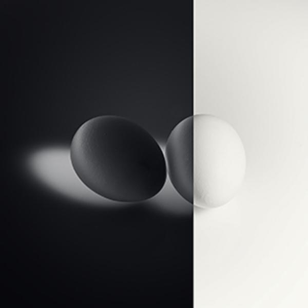 デジタルネガと銀塩プリント体験会