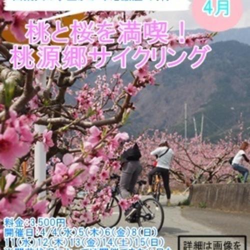南アルプス市 4月 桃と桜を満喫!桃源郷サイクリング