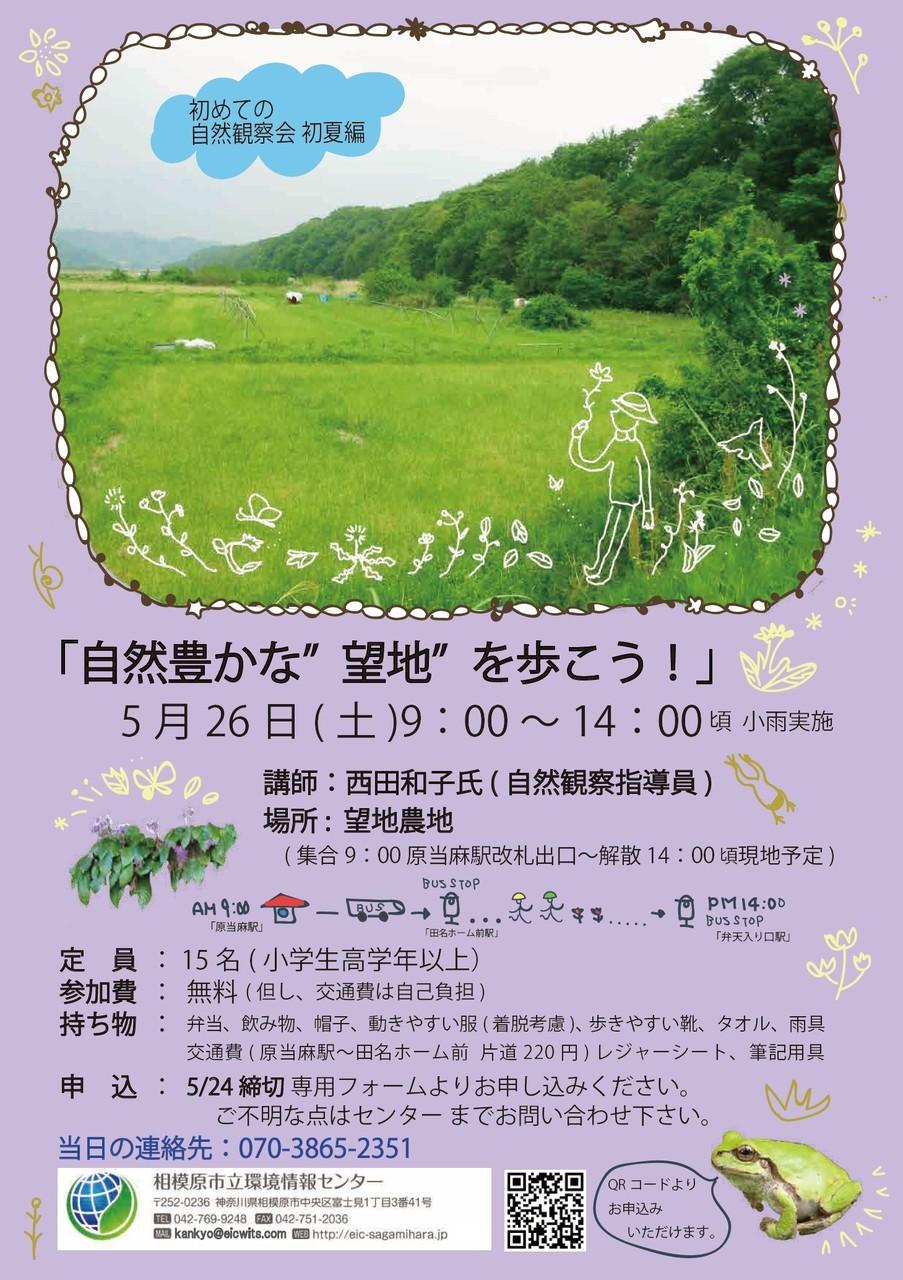 初めての自然観察会 初夏編 ~自然豊かな「望地」を歩こう~