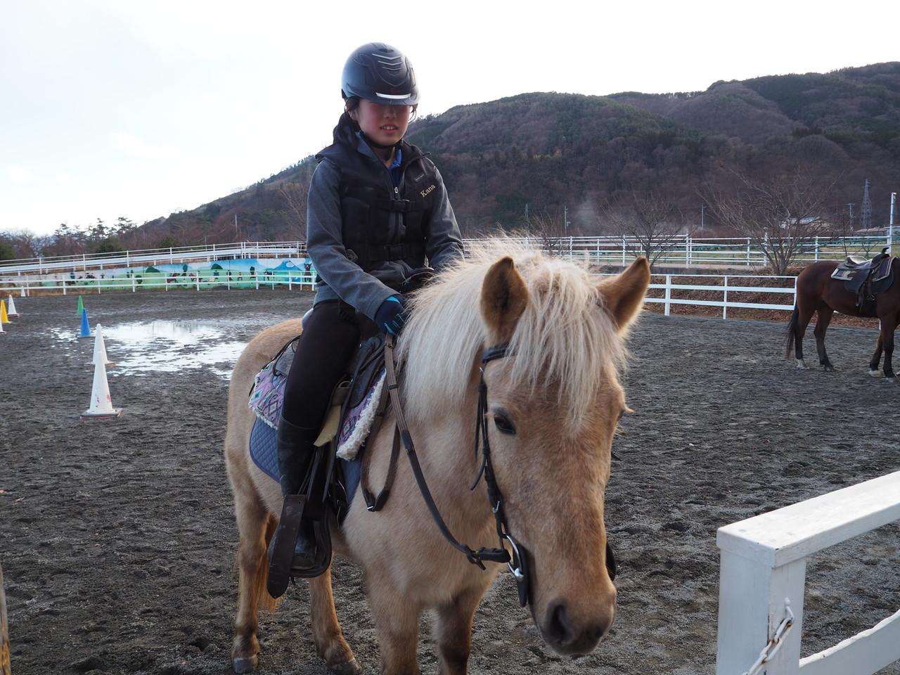 乗馬体験レッスンコース(20分間)