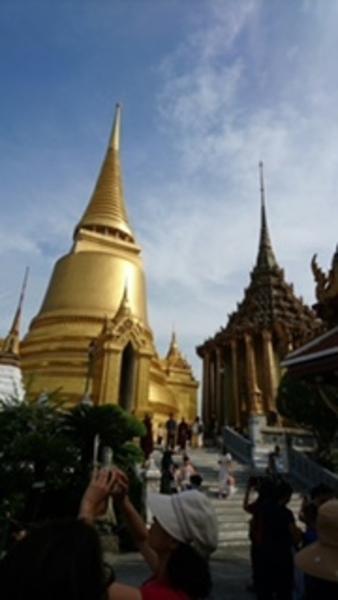 【10月】ひぃろ先生といく、タイバンコクYOGA&寺巡りツアー