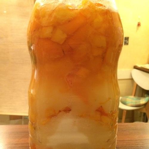 無農薬の柑橘類で酵素シロップを作りましょう!