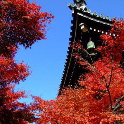 【妙顕寺 秋のライトアップヨガ】 - Myokenji Temple yoga -