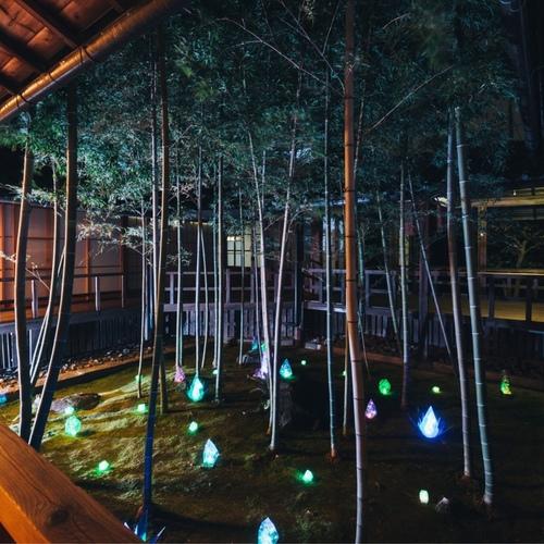 妙顕寺 秋のライトアップヨガ - Myokenji Temple yoga -