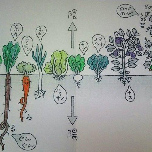 6/19 陰陽調和料理法による食育講座ー体験会ー