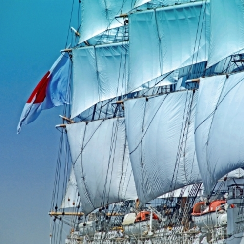 【Event】帆船鑑賞クルーズ The sailing vessels viewing cruise