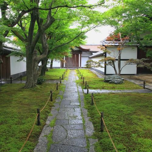 新緑の大徳寺黄梅院で写真撮影会【8名限定】