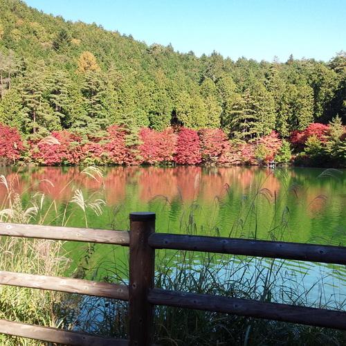 秋)自然満喫親子キャンプツアー in 伊奈ヶ湖(宿泊)