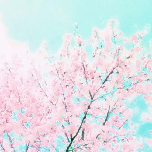 「デトックスを促す春の陰ヨガWS」 Emi 4/29(日)13:30~15:30