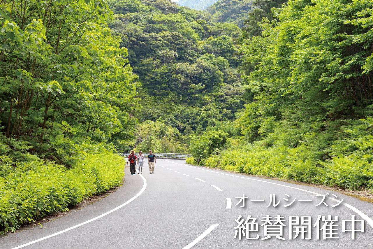 屋久島の野山を満喫しよう!『宮之浦のんびりハイキング』