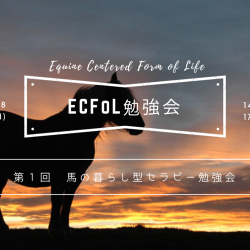 神戸【勉強会】[実技]第1回 馬の暮らし型セラピー勉強会 -ECFoL勉強会-