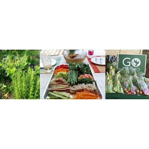 Organics Day オーガニックで満たされる一日