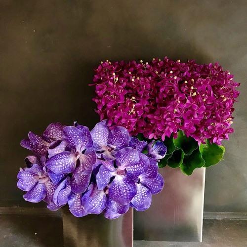 終了【青山3/12開催】花のある暮らし/特別ランチ付き / 講師:竹田浩子/ プレミアム