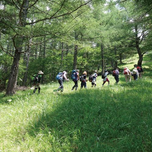 2017年度初夏 櫛形山トレッキングツアー(日帰り)