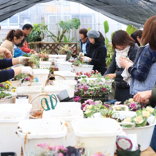 【関西一般】ギャザリング花の寄せ植え教室