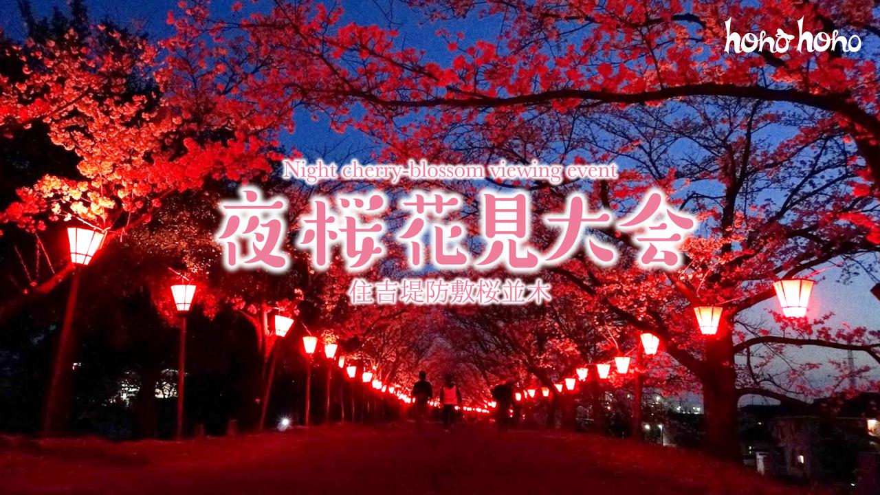 【3/31開催】hono hono 夜桜花見大会