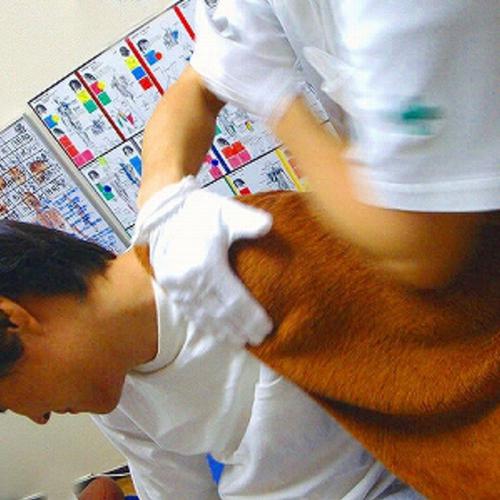 Kichijoji-machi shoulder stiff shoulder body stiff neck