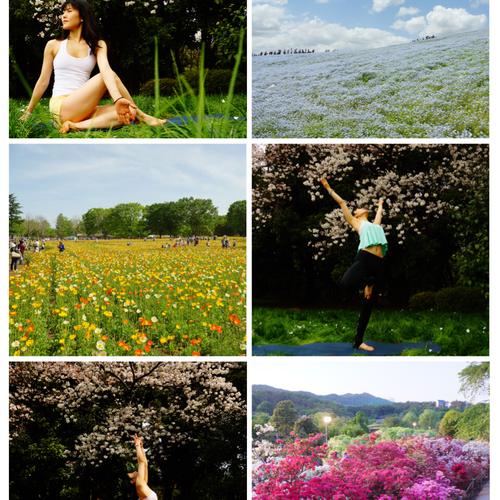 新宿御苑でピクニックヨガ~Yoga in the Park