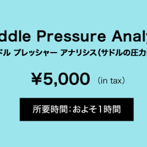Saddle Pressure Analysis