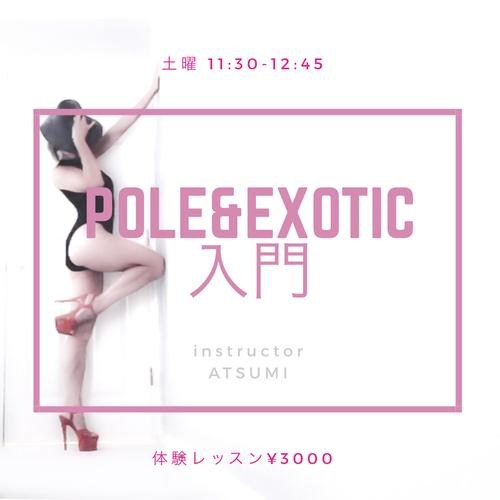 🔰pole & exotic 入門 75分 (担当:ATSUMI)