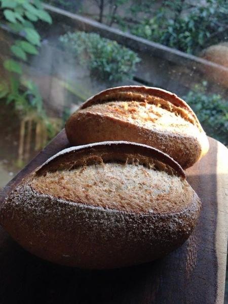 ポリパン®︎で天然酵母パンを焼こう!