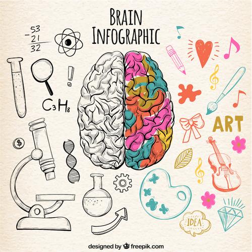 【学生限定!】効き脳で適性を知ろう!進学や就職に悩んでいる人へ【アカデミック価格】