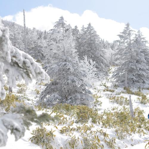【2/27(水)】 テント泊で行く硫黄岳の歩き方